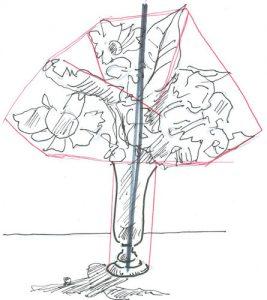 Bloemen Tekenen Stap Voor Stap Lerentekeneninstappencom