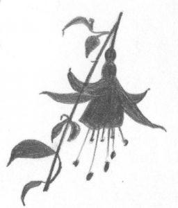 fuchsia silhouet